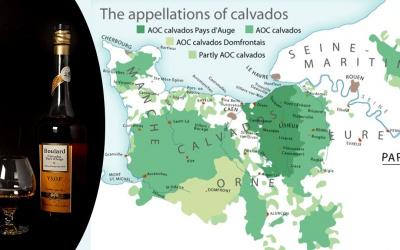 Calvados – bohater powieści
